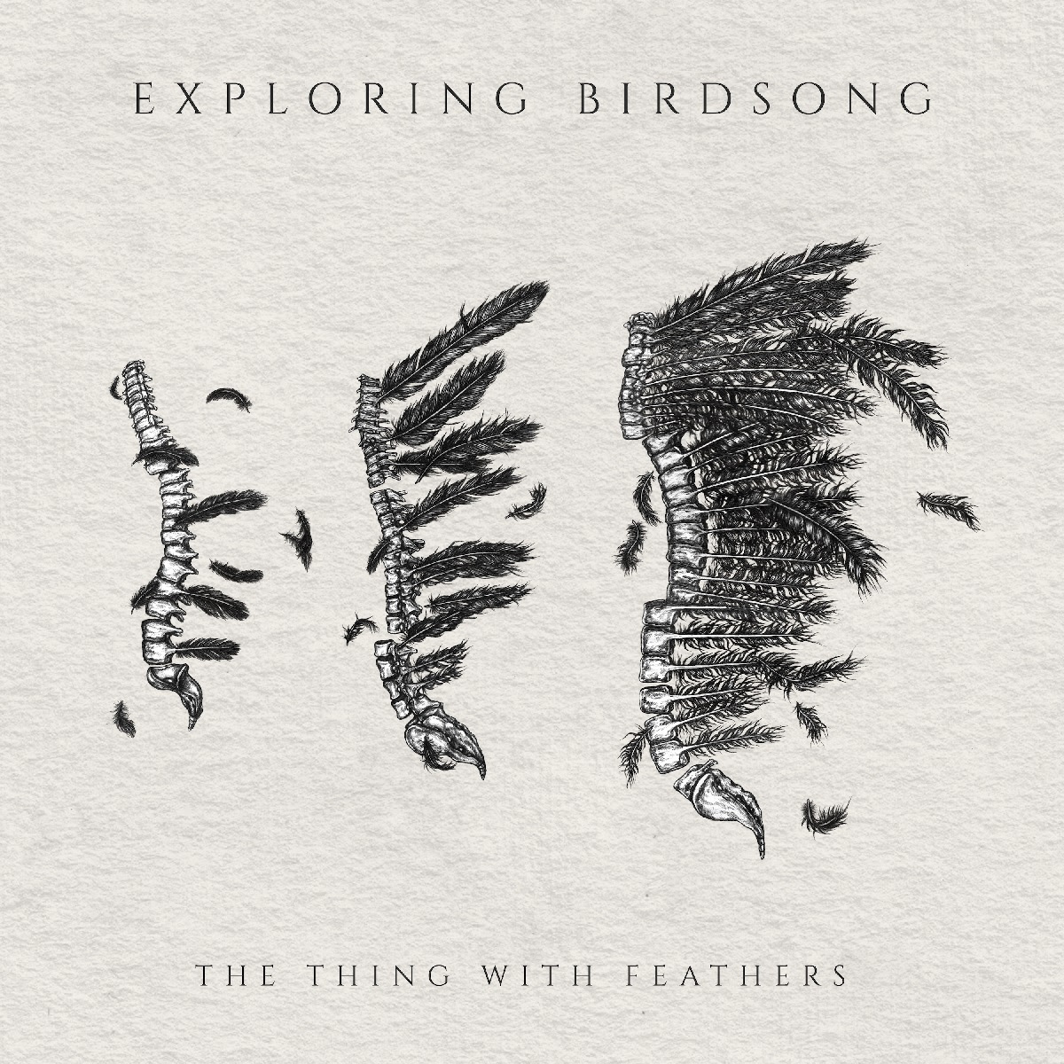 Exploring Birdsong – The Thing With Feathers – Review